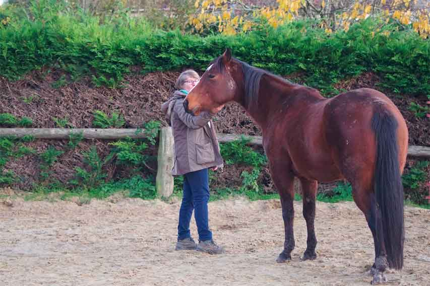 Le cheval, guérisseur de l'homme