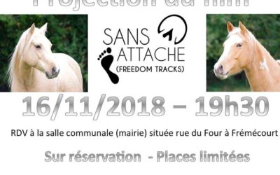 Projection film « Sans Attache »