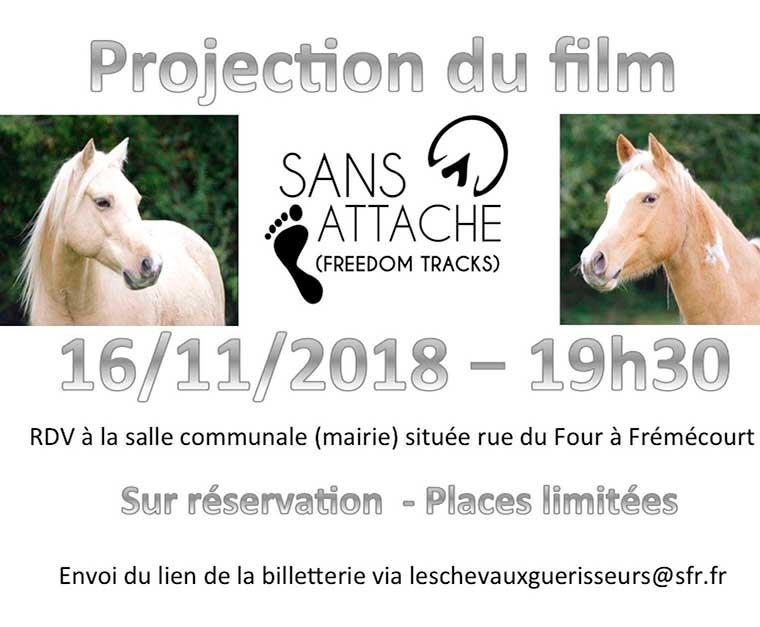 Projection film «Sans Attache»